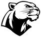 Les Black Panthers